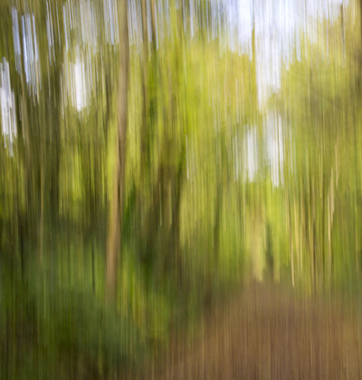 Camera-Bewegen-Intentional-Camera-Movement.jpg