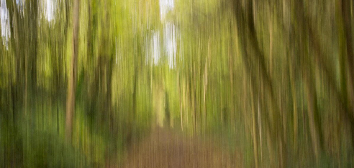 Get The Picture Challenge: BEWEEG JE CAMERA (ICM)