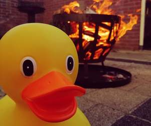 This duck is on fire